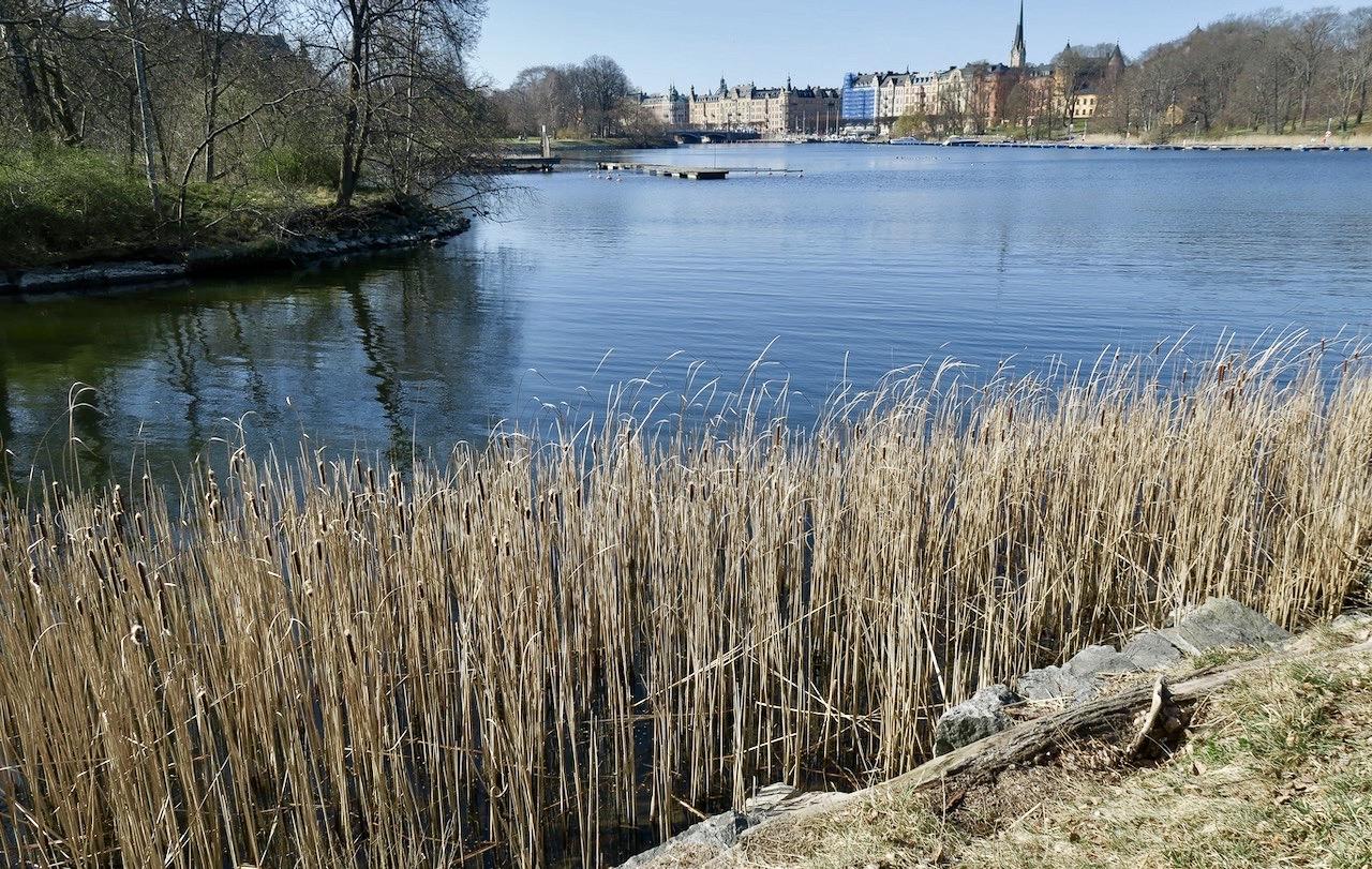 Vi fortsätter vår Stockholmspromenad in mot City längs vattnet i Djurgårdsbrunnskanalen.