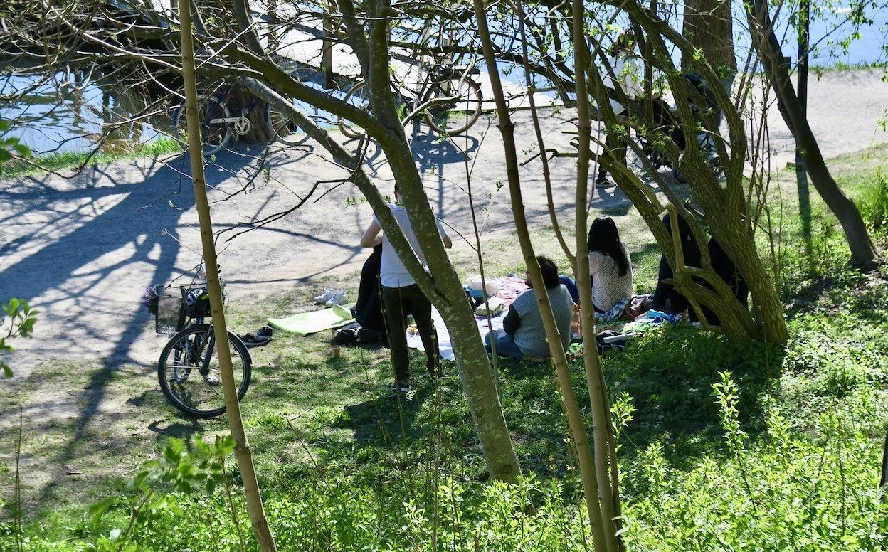 Picknick i det gröna vid Årstaviken. Kanske inte den lugnaste platsen för just här vid grusvägen brukar det vara fullt av folk i farten som joggar eller cyklar snabbt