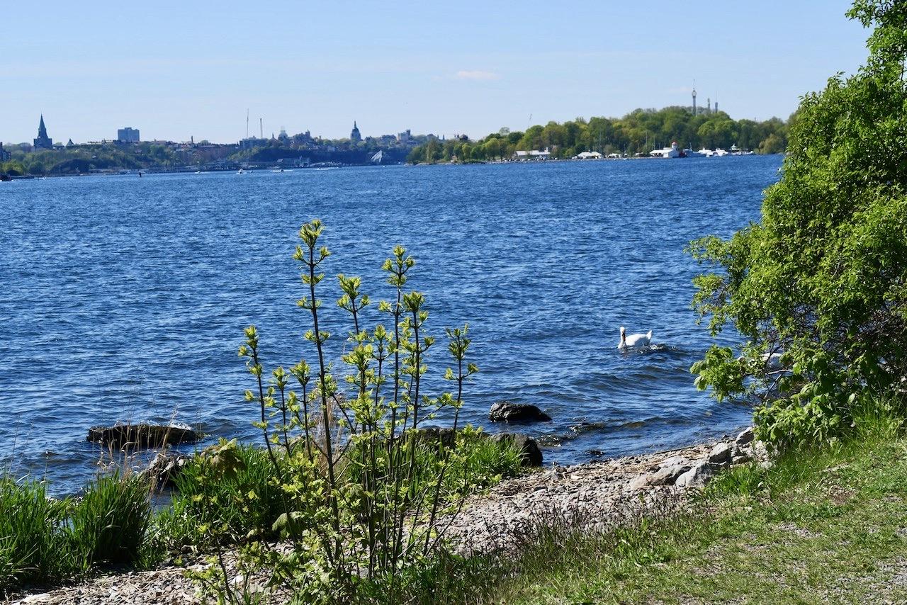 Södermalm skymtar och man ser tornen på både Sofia och Katarina kyrka hit till Djurgården