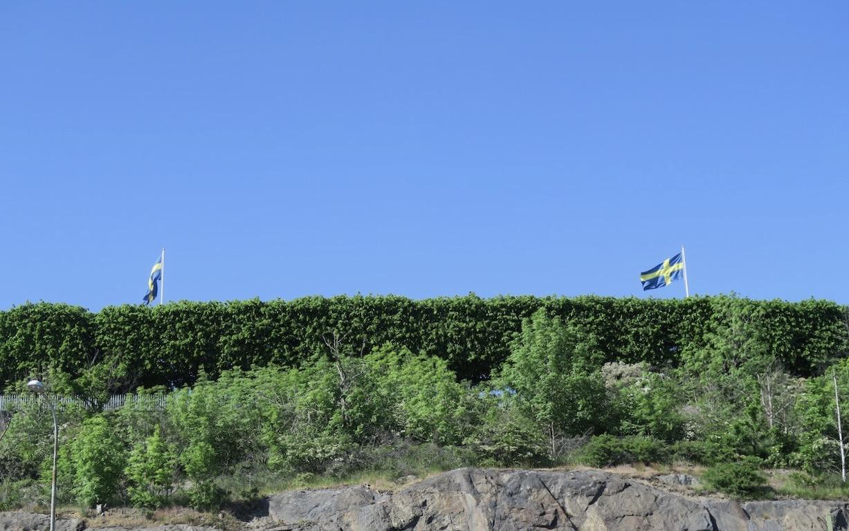 Fåfängan på Södermalm. Och denna strålande juni dag är det färgerna blått och grönt som gäller.