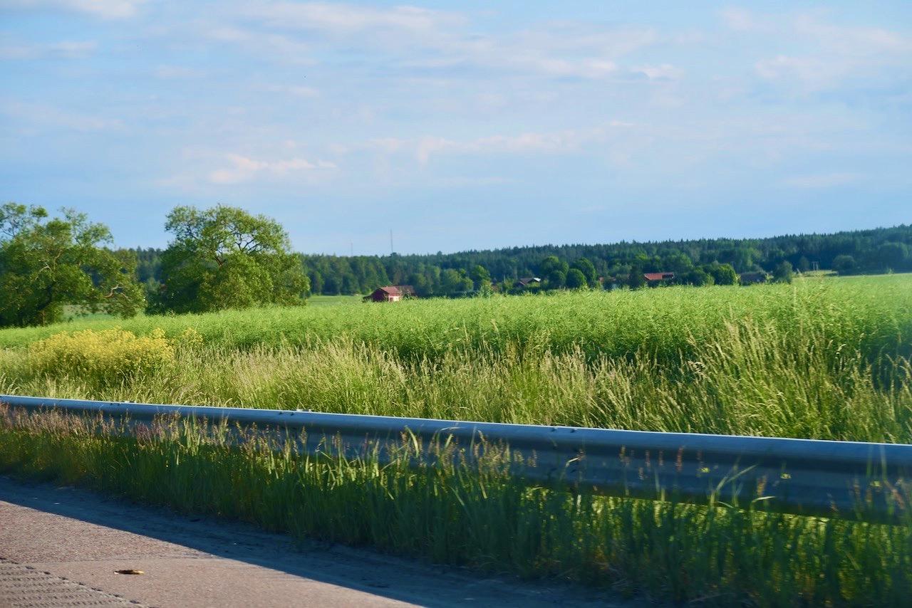 På våg till Uppsala- Åkrarna har på Uppsalaslätten bytt ut det gula i rapsfälten mot vacker grönska.