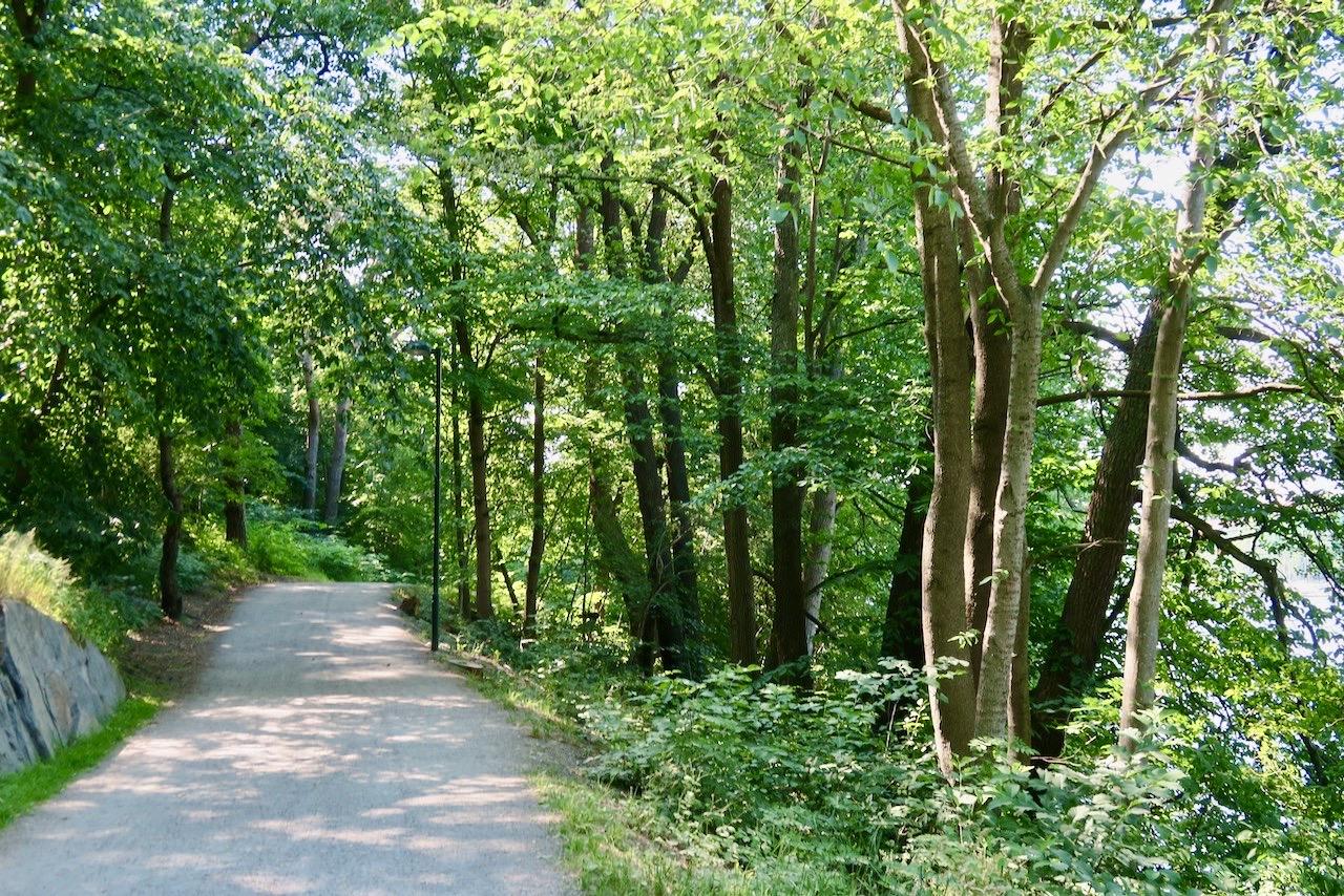 Årstaskogen. En av de grusade vägarna längs Mälaren