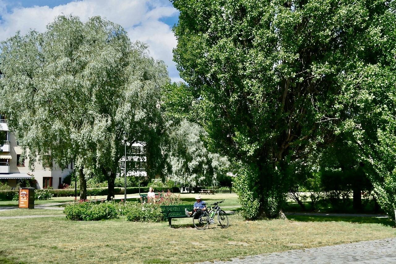 Anna Linds park. Södermalm. Paus här på vår båtpromenad. Båtresa kombinerad med promenad.