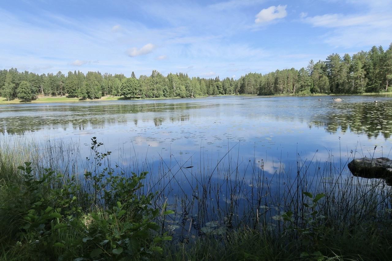 Gästrikland. Högbo bruk. Dammsjön. Promenaden runt sjön är vacker och det får ta tid att ta sig runt.