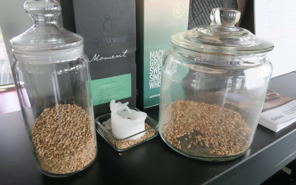 Mackmyra. Gästrikland. Här två olika varianter av korn som används vid whiskytillverkningen. En mer rökig än den andra.