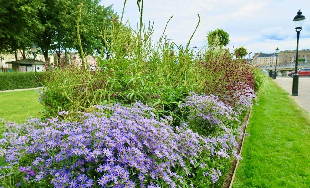 Stockholm. Kungsträdgården. En del växter var utbytta sedan i juli och även nu en lyckad kombination.