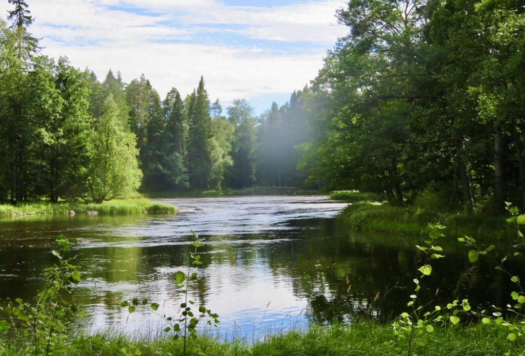 Gästrikland. Färnebofjärden är en nationalpark vid Dalälven op gränsen mot Uppland.