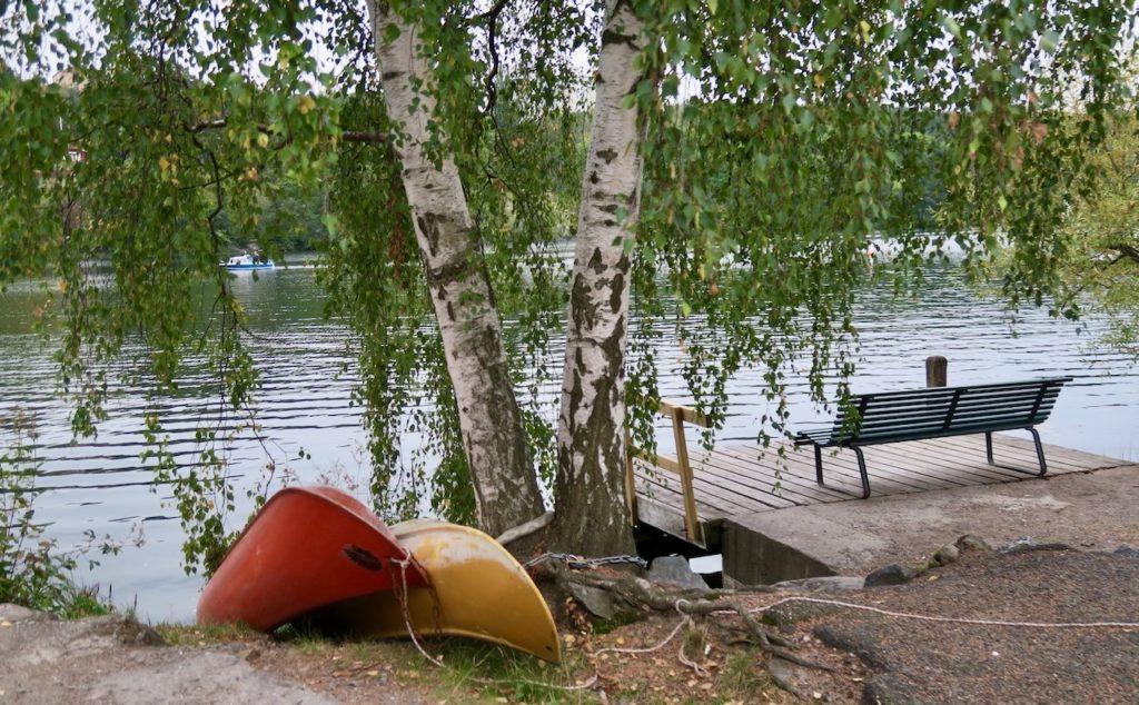 Stockholm. Södermalm. Grönt är fortfarande den dominerande färgen på björkarna trots att hösten är här.