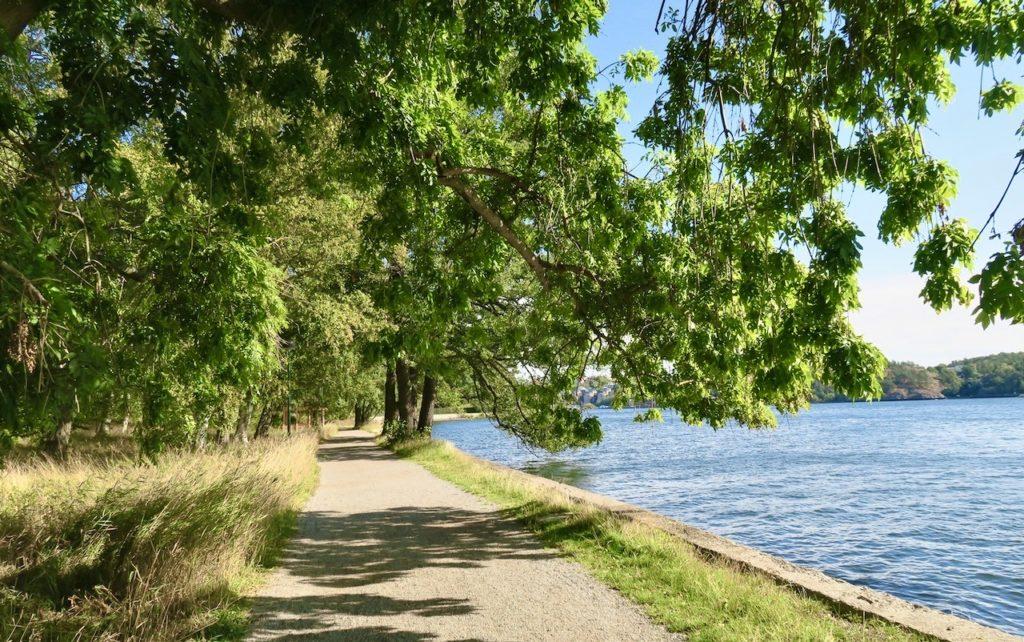 Stockholm. Djurgården. Fortfarande lummigt och grönt.