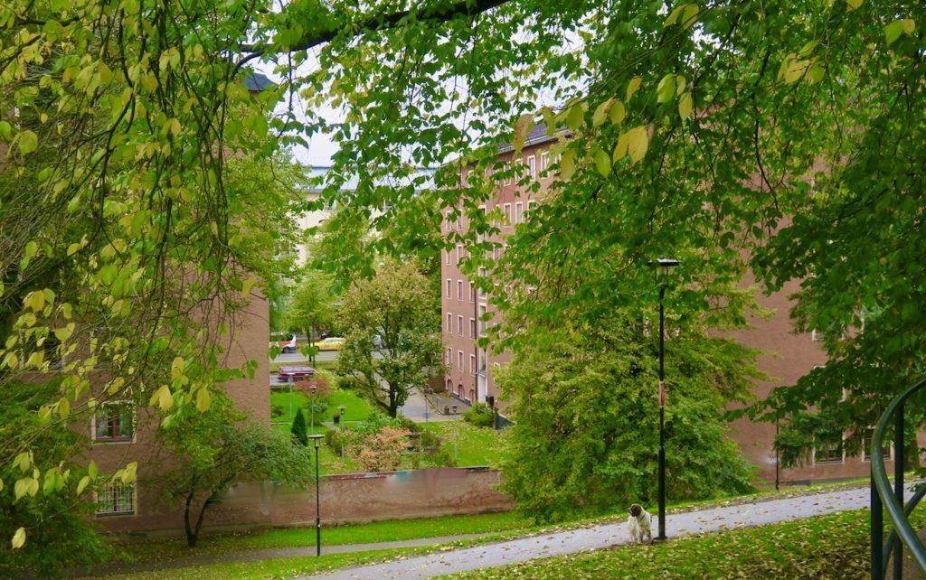 Stockholm . Södermalm. Blomsterfondens hus byggdes på 1920-talet. Gammalt men nytt i sammanhanget vad gäller områdets historia