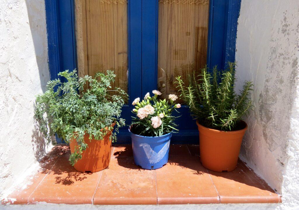 Spanien. Ön Tabarca utanför Torrevieja. Blått och grönt är fortfarande de färger som gäller.