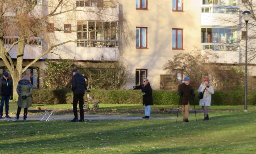 Stockholm. Södermalm. Anna Linds park. Här spelar man fortfarande boule i november. Men med avstånd mellan spelarna
