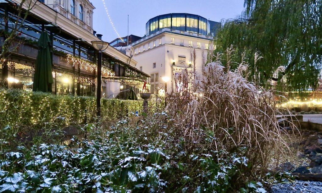 Stockholm. Berzelii park. Än mer ljus blev det av det snöblandade regnet som för en jort stund dröjde sig kvar på buskarna.
