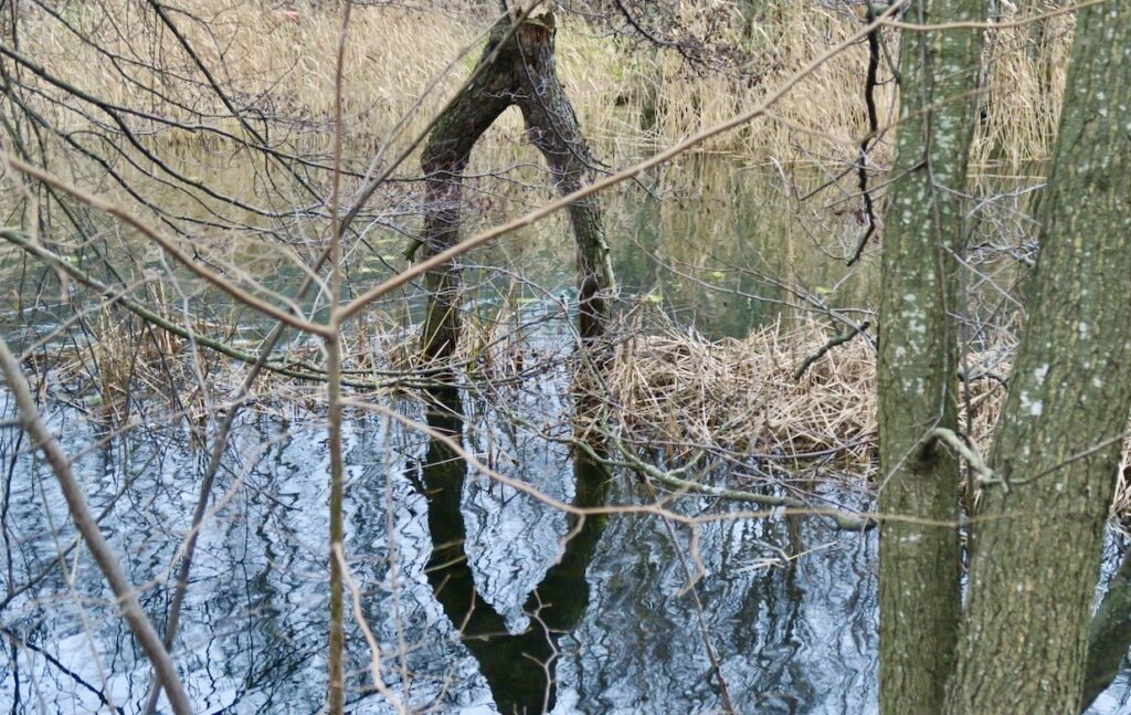 Nacka. Sicklasjön. Här kan man ta bron över vattnet om man vill ta sig vidare til Nacka reservatet.