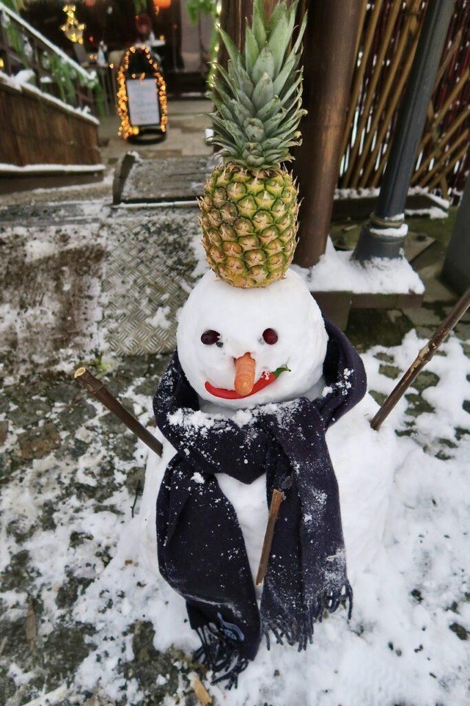 Stockholm. Södermalm. Sett igår utanför restaurang Thaiboat. En snögubbe med en ananas på huvudet. Idag bortregnad.