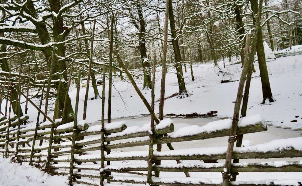 Stockholm. Norra Djurgården bjöd på god blandning denna fina vinterdag.