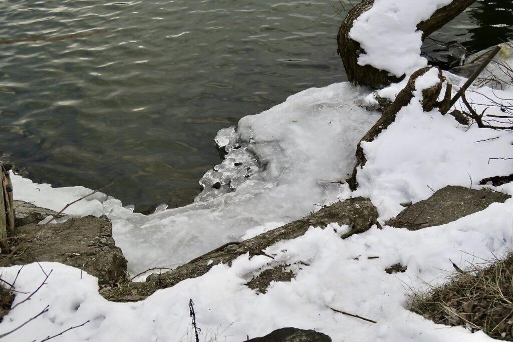 Stockholm. Årstaviken vid Hammarbyslussen Fera olika nyanser av vitt och grått både på isen, i vattnet och i snön.