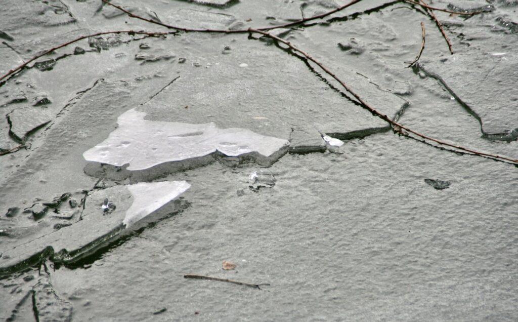 Stockholm. Årstaviken. Lite typiskt vårvinter med is vid strandkanten.