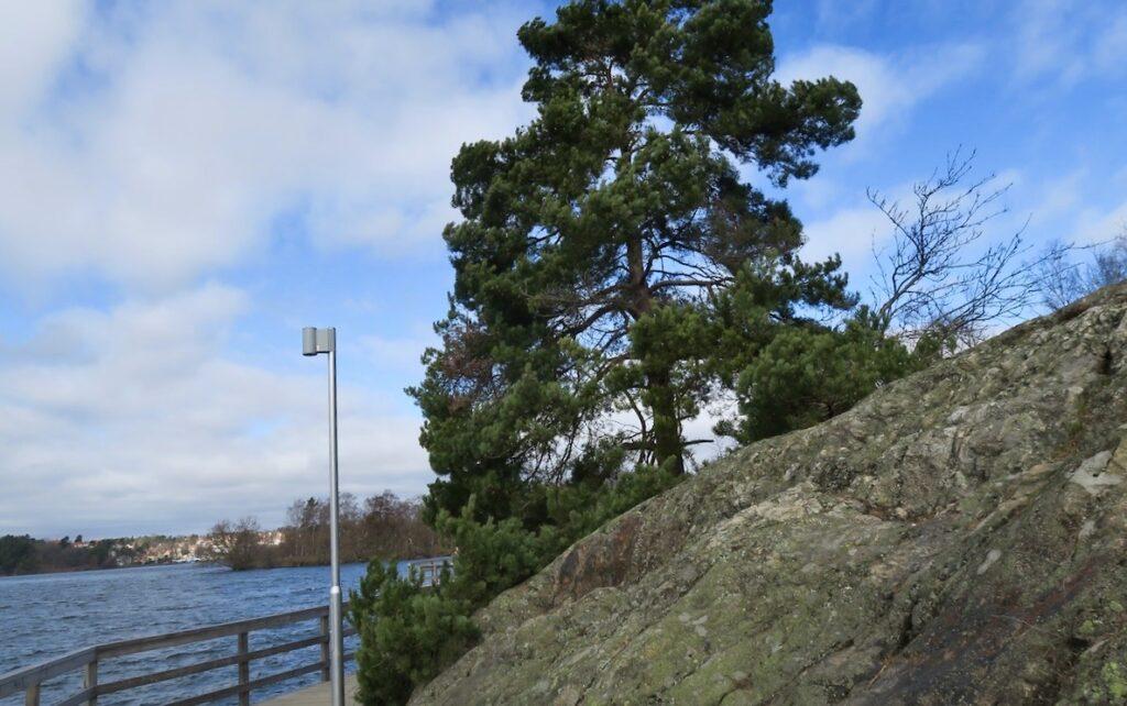 På väg till Vinterviken och när vi passerar Örnberget tar vi oss en sväng upp