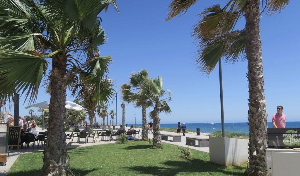 Torrevieja. En skön söndag i skuggan vi havet och vind i palmerna.