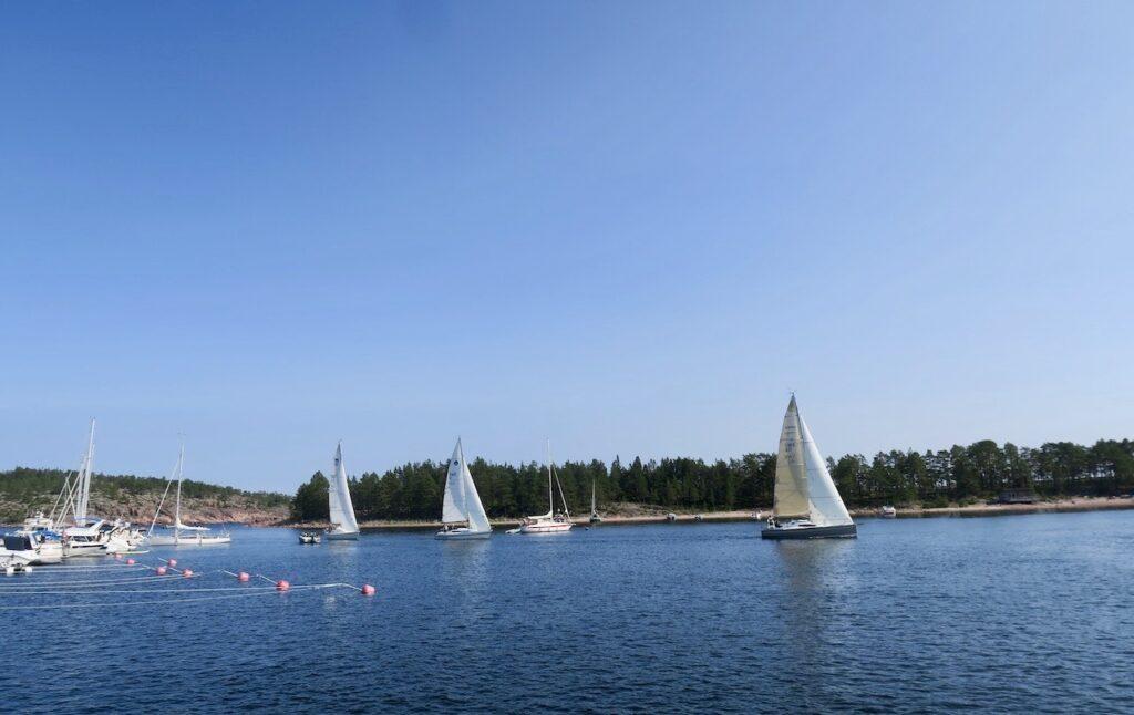 Höga kusten. Ångernanland. I sundet in till Ulvön möter vi flera segelbåtar.