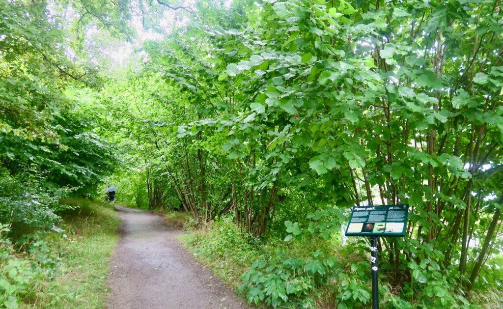 Bergshamra. Solna, Pipers park är en del av östra Tivoliparken.